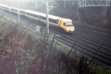 Photo' from a tree above the cutting between Watford Junction and the tunnel mouths © Neal Cooper